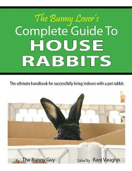 Complete Guide to House Rabbits
