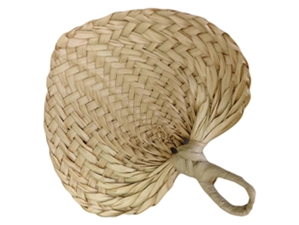 Woven Palm Fan (COLORS)